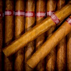 cigar3-optimised-2.jpg