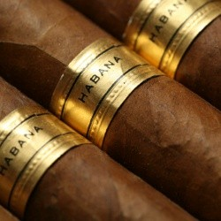 cigar8-optimised-2.jpg